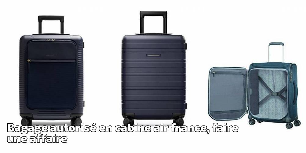 plus récent c555a 1d93c Bagage autorisé en cabine air france, faire une affaire pour ...