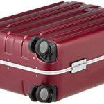 Bagage cabine 55cm x 40cm x 20cm ; le top 14 TOP 4 image 3 produit