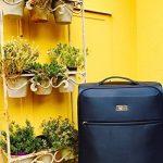 Bagage cabine 55x40x20 - notre top 6 TOP 10 image 2 produit