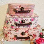 Lot 3 valises - comment acheter les meilleurs produits TOP 6 image 2 produit