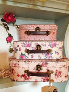 Lot de 3 valises de rangement vintage Rose de la marque Sass Belle image 0 produit