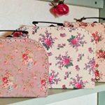 Lot de 3 valises de rangement vintage Rose de la marque Sass Belle image 1 produit